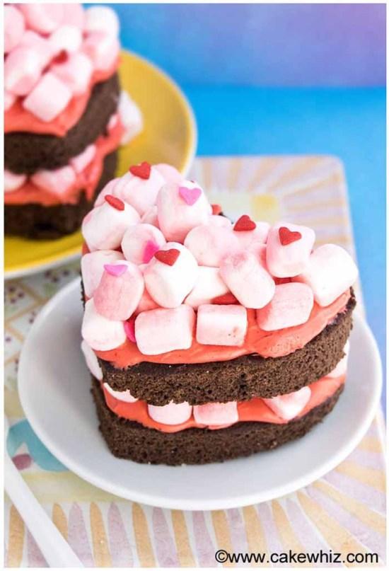 heart shaped chocolate marshmallow cake