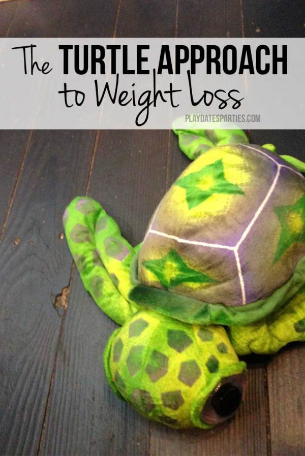 turtle-approach-weight-loss-p2