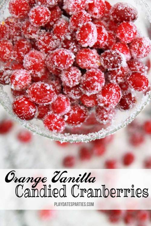 Orange vanilla candied cranberries are sweet and sour little bits of deliciousness that everyone in the family will enjoy.