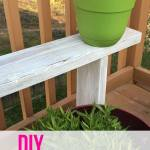 Potted Plant Benches & Privacy Screen: You Decide!