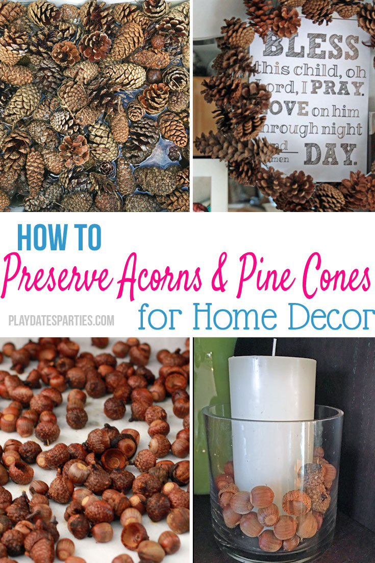 How-to-Preserve-Pine-Cones-Ft3