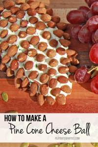 How to Make a Pine Cone Cheese Ball