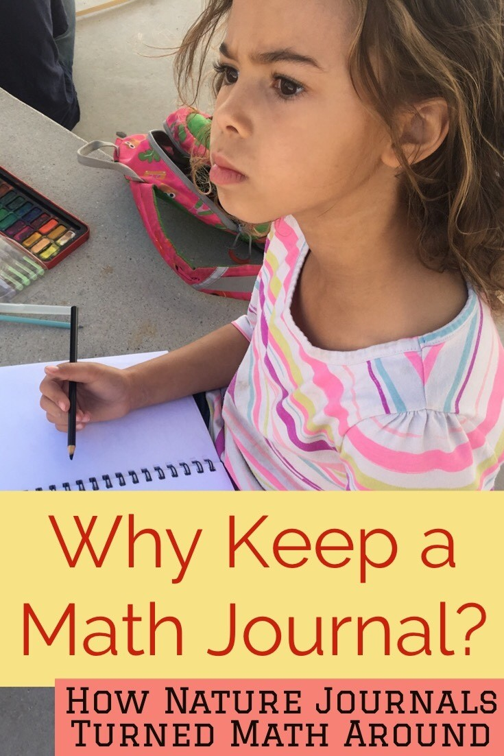 Nature journals opened the next door for us when I realized the connection between math and the habit of observation.    If nature journals could open the door for the habit of observation in a beautiful forest, why couldn't a math journal do the same thing?