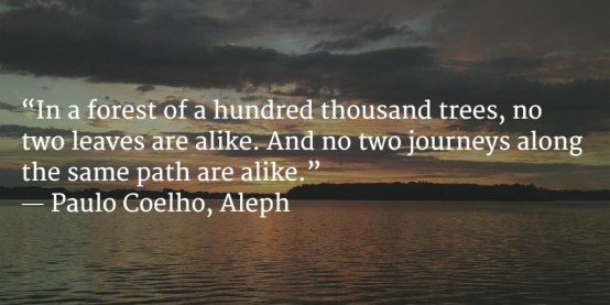 """In a forest of a hundred thousand trees, no two leaves are alike. And no two journeys along the same path are alike.""  ― Paulo Coelho, Aleph"