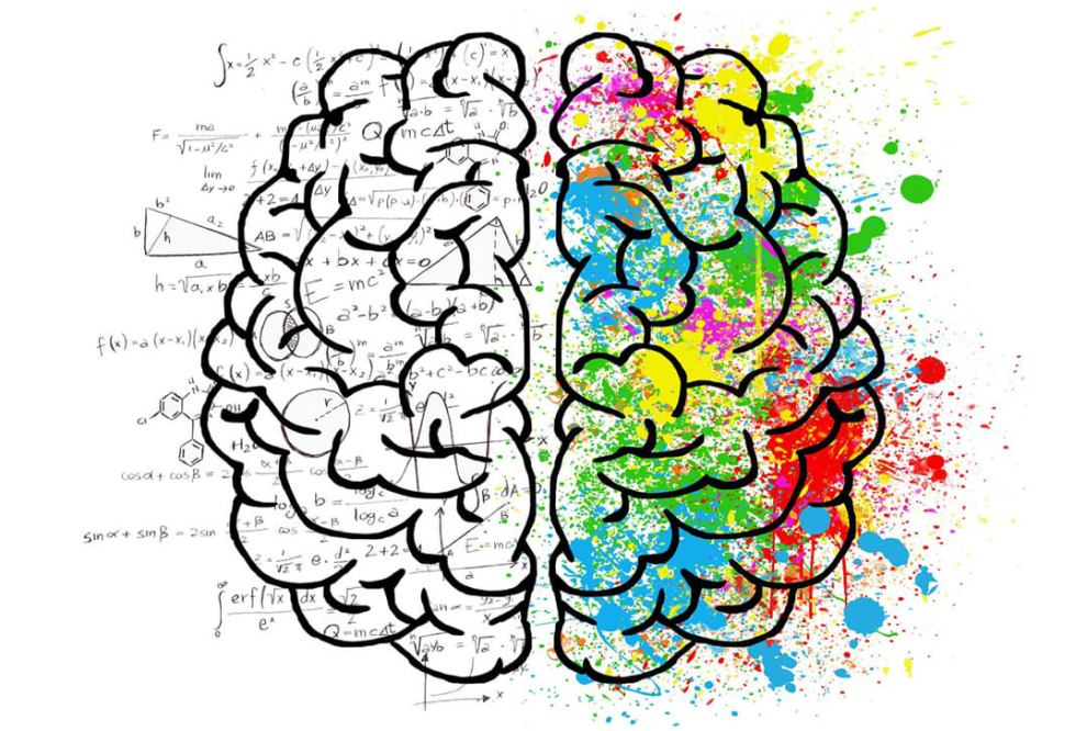 PlayGames2Learn.com - Games from Our Brains