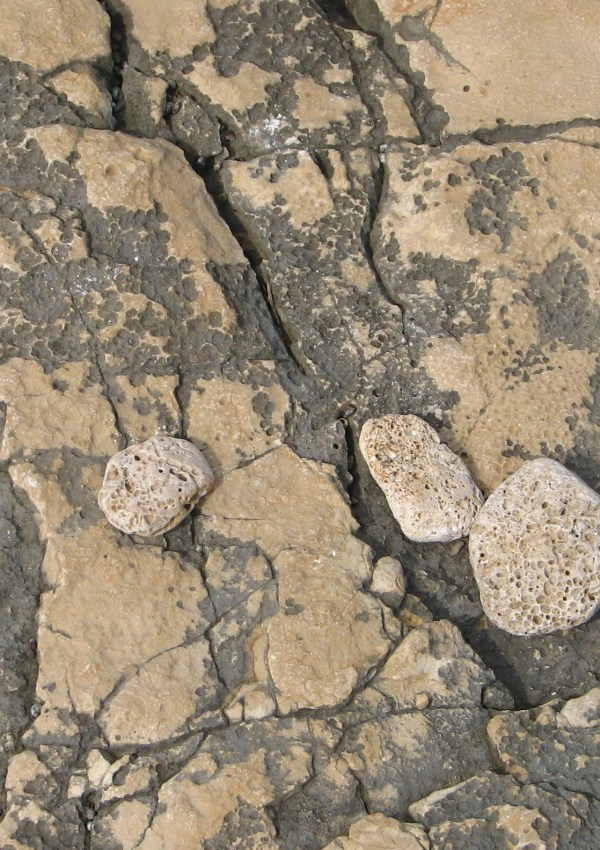 Stones on the Croatian seashore