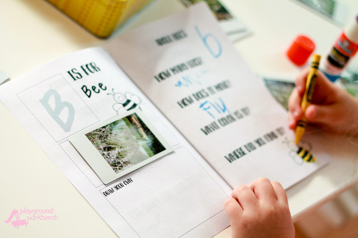 All About Bugs Preschool Observation Journal