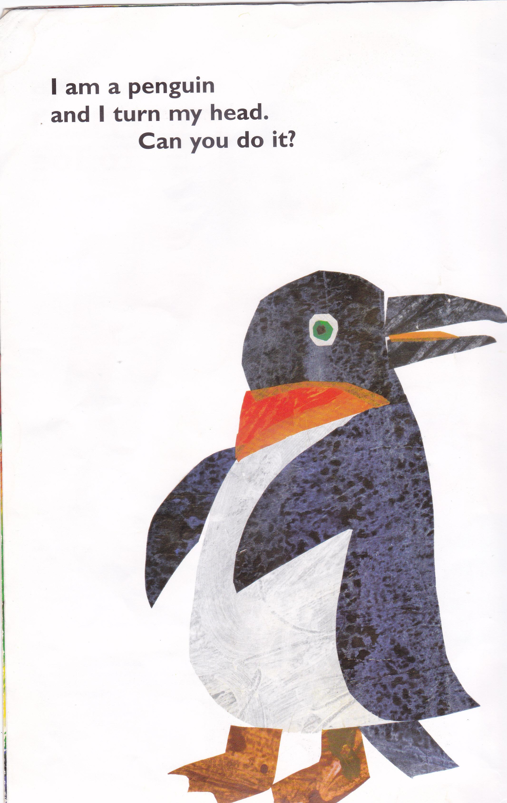 Zoo Animals Picture Books