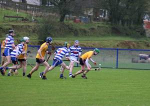 Hurling Sticks For Sale Reynolds Hurleys in a match ahead of the pack