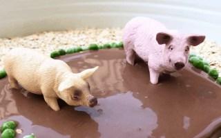 Taste safe muddy pigs sensory play