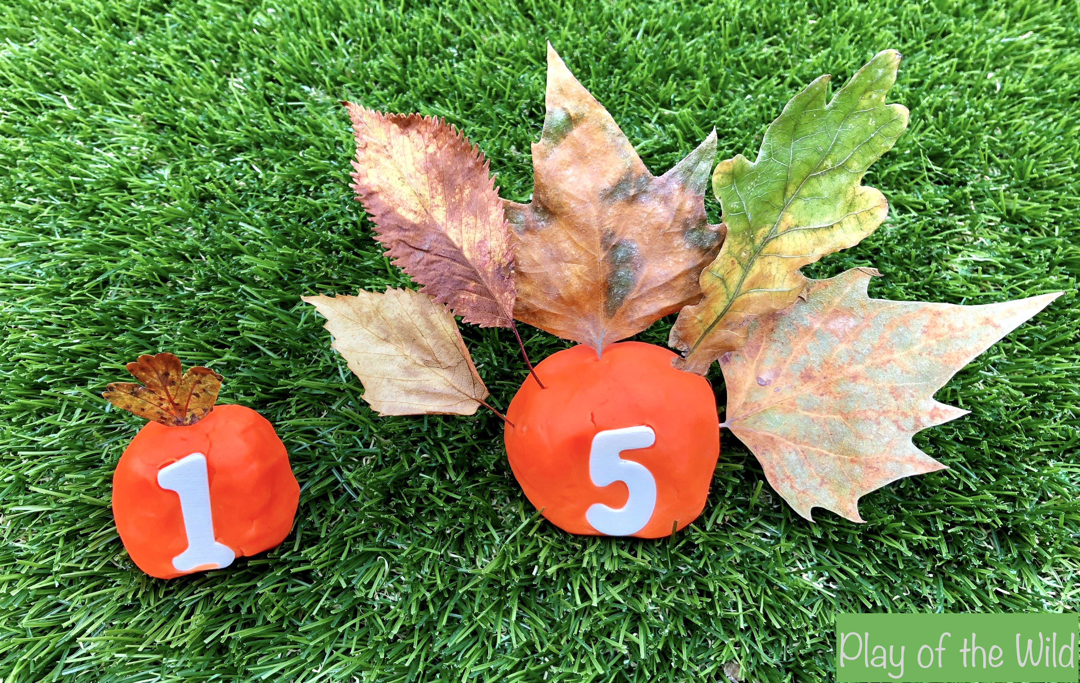 Matching numbers and leaves to teach children to count.