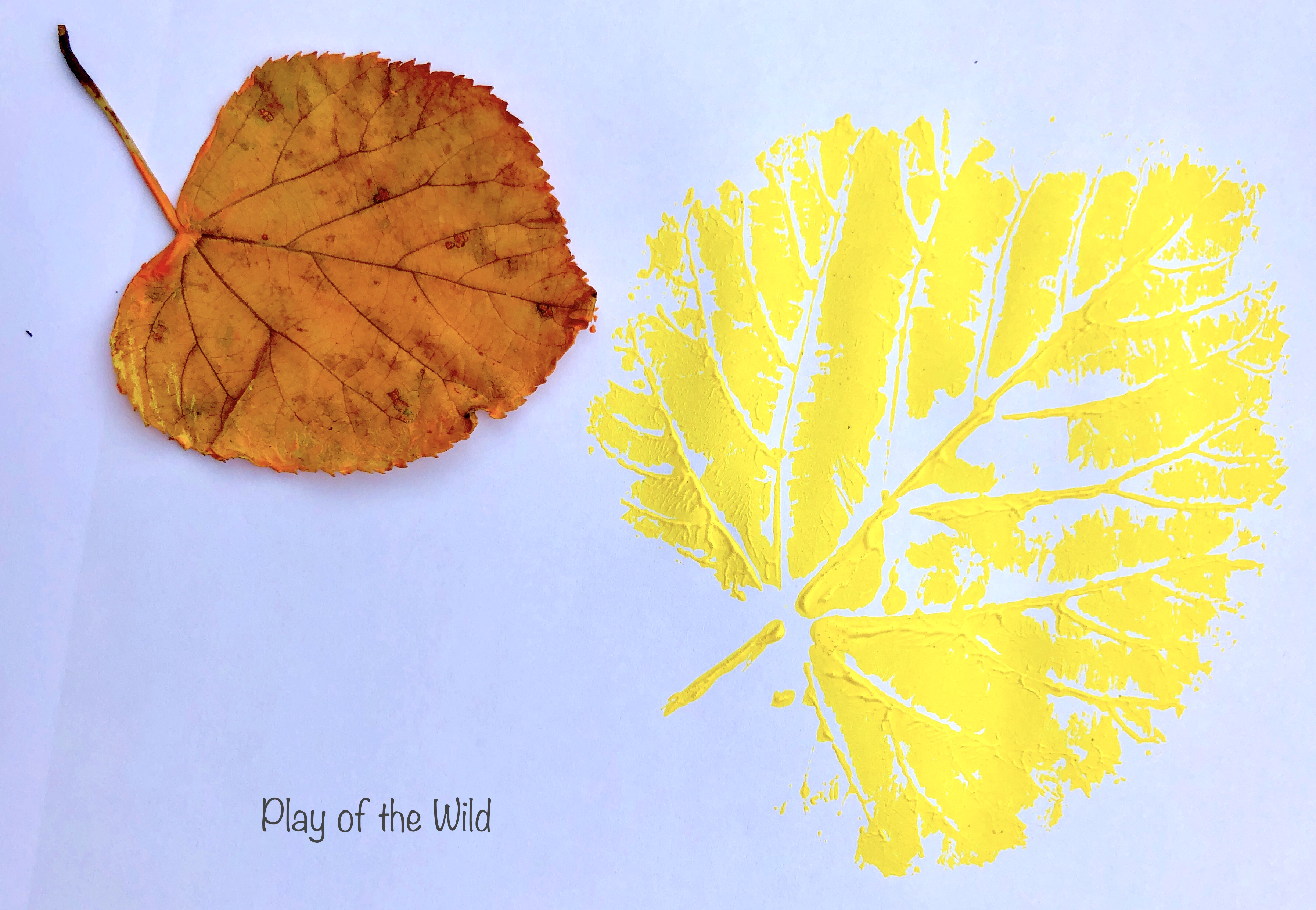 Painting leaves with acrylic paint.