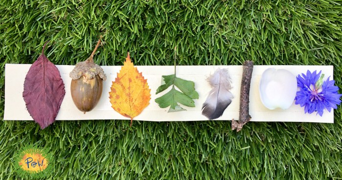 Journey Stick, Journey strip. Autumn Leaf Activity for children. Children collect objects from their walk. Helps children recount their walk.