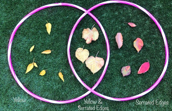 Venn Diagram for children with leaves.