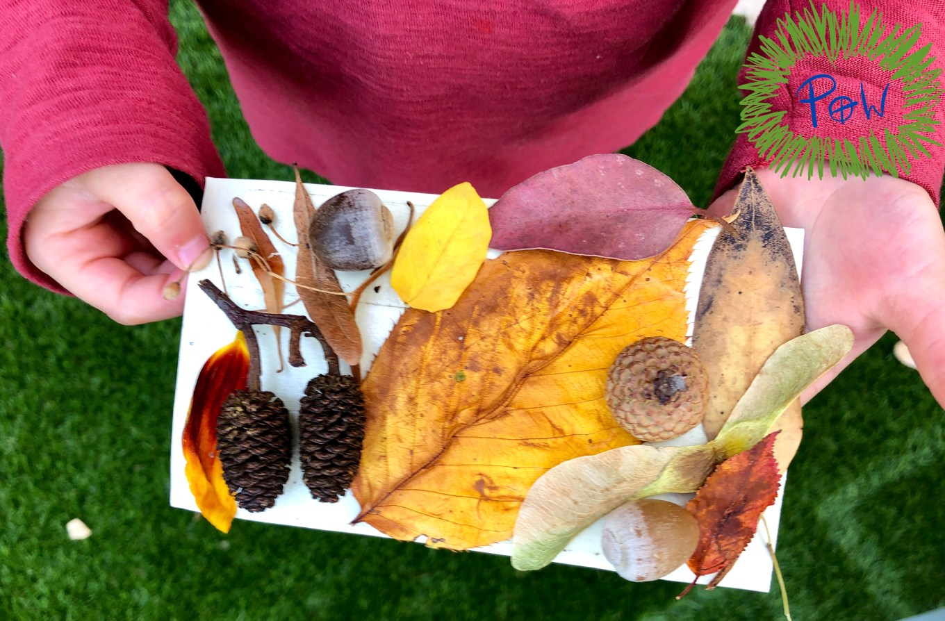 Autumn leaf activity for children. Miniature autumn collage with leaves and other objects from the autumn season.