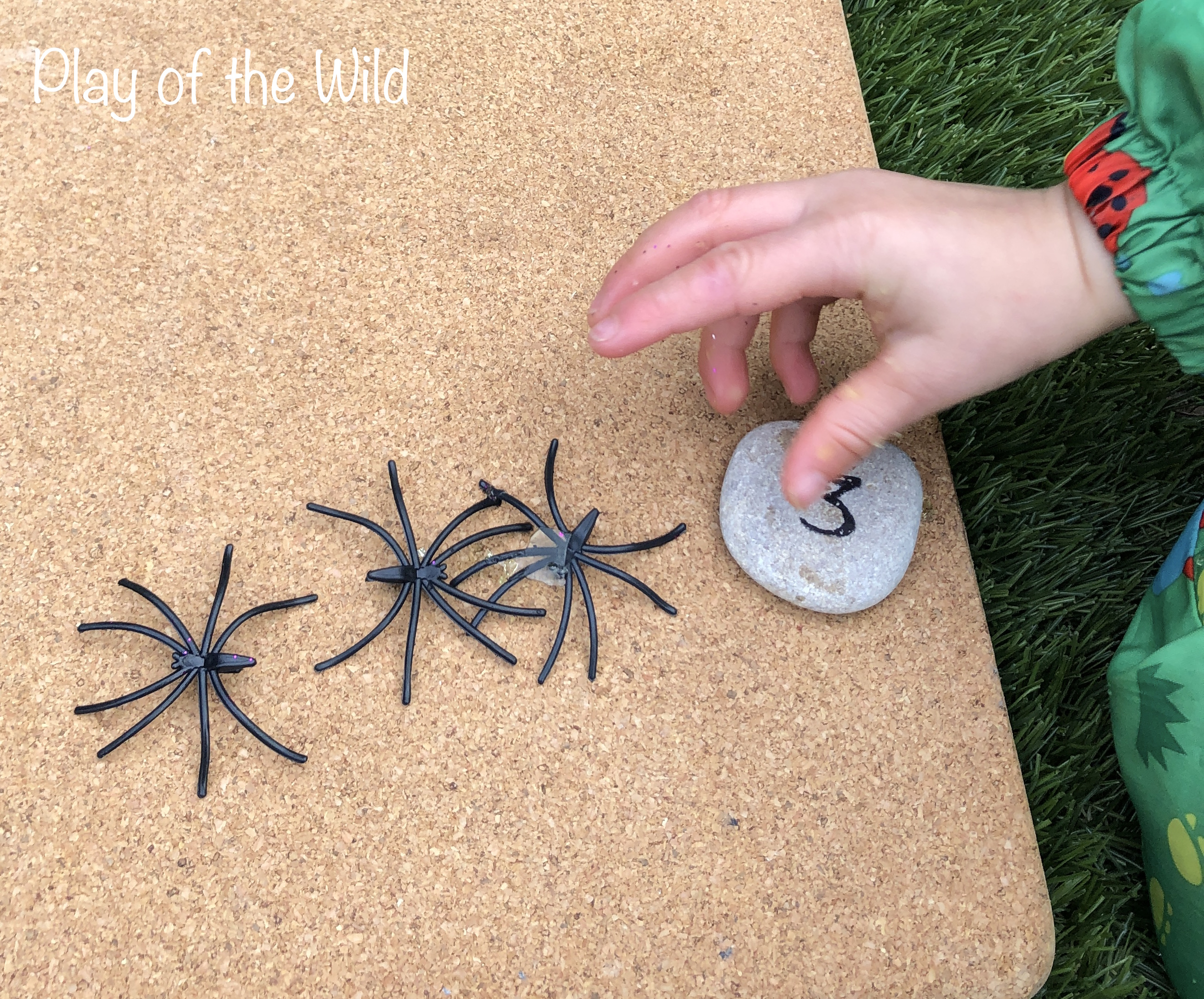 counting spiders and matching it with numerals