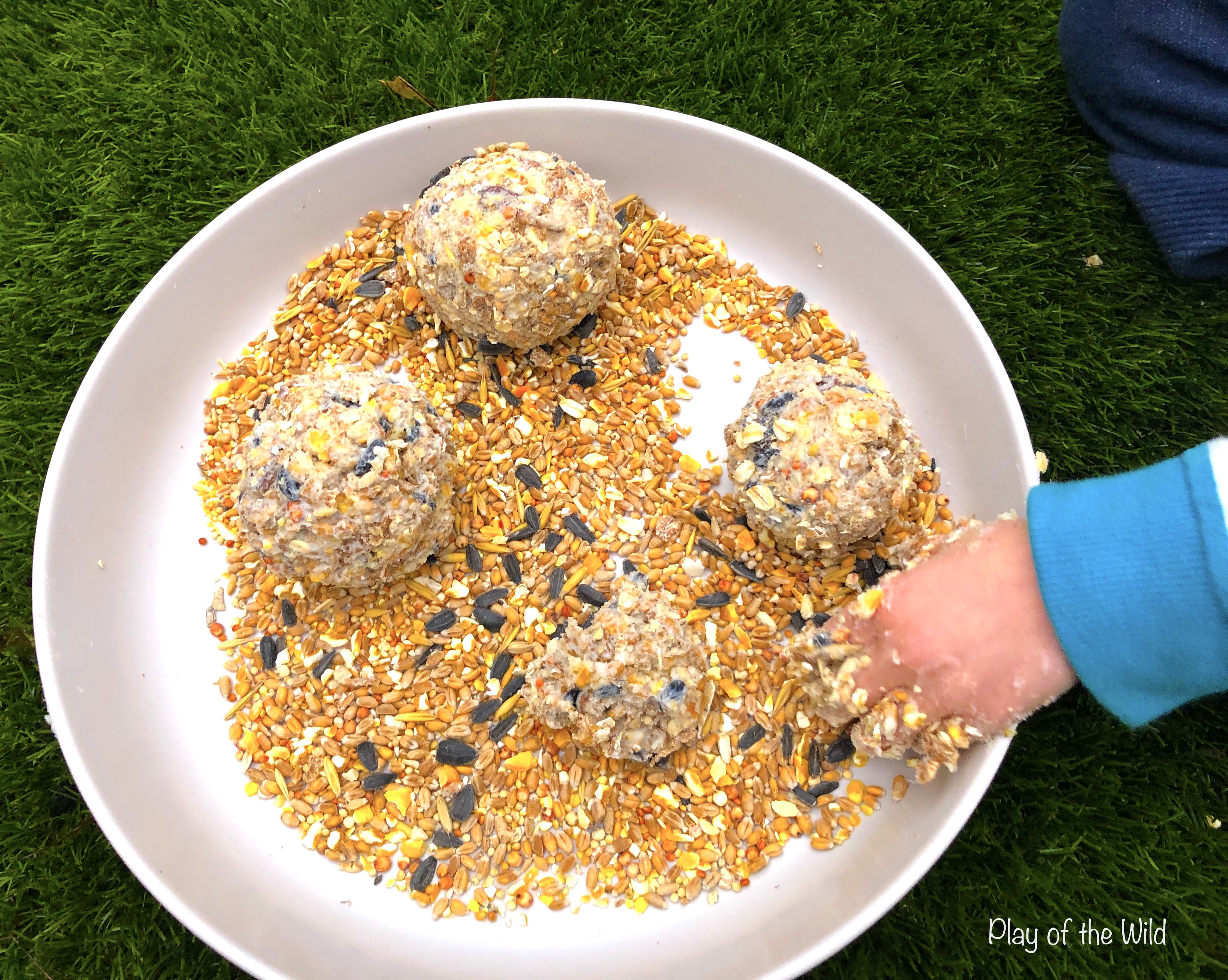 How to make a Bird Feeder without Peanut Butter (Suet Cake). child making bird cakes.