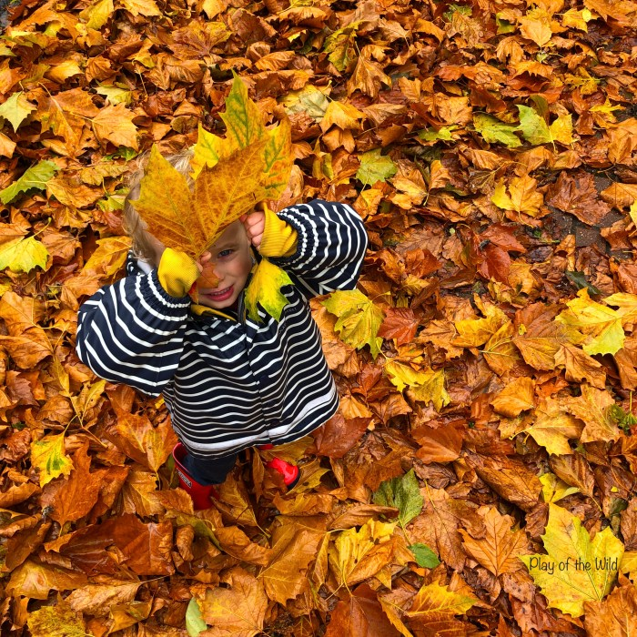 Outdoor Autumn & Winter Garden Activities for Children.  Collecting leaves for compost.