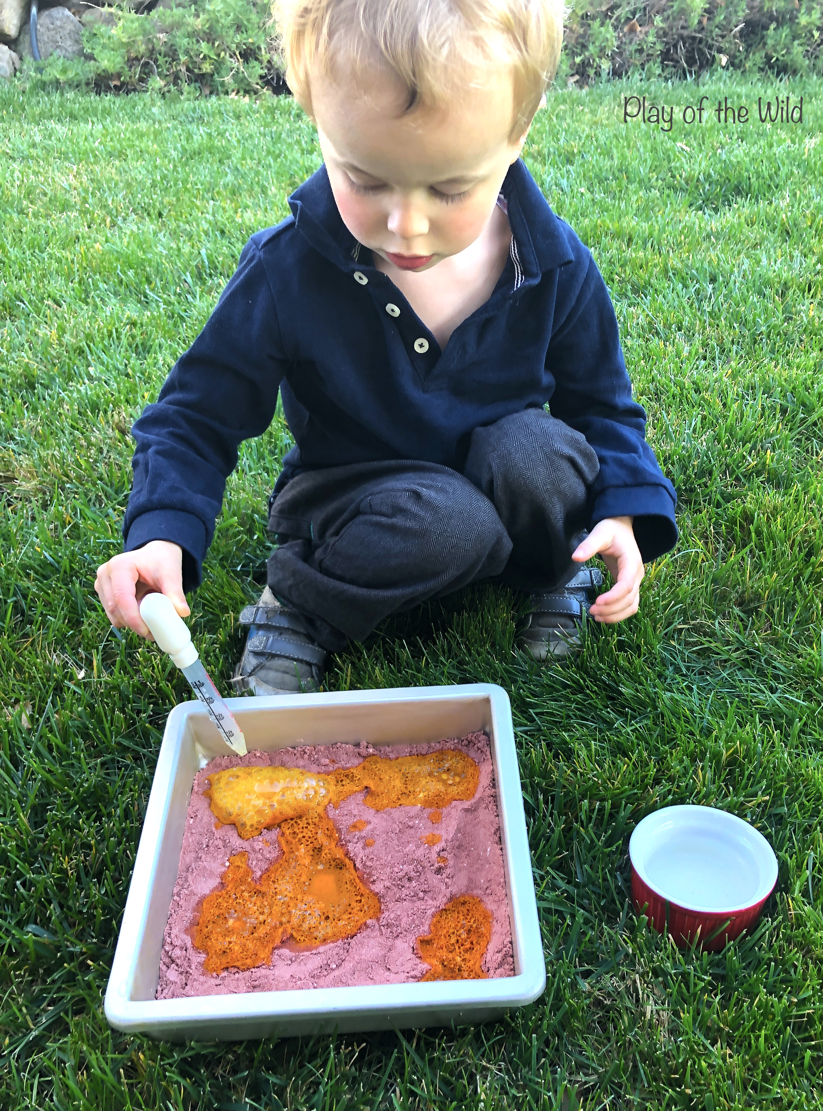 baking soda and vinegar science experiment for kids. ph turmeric indicator