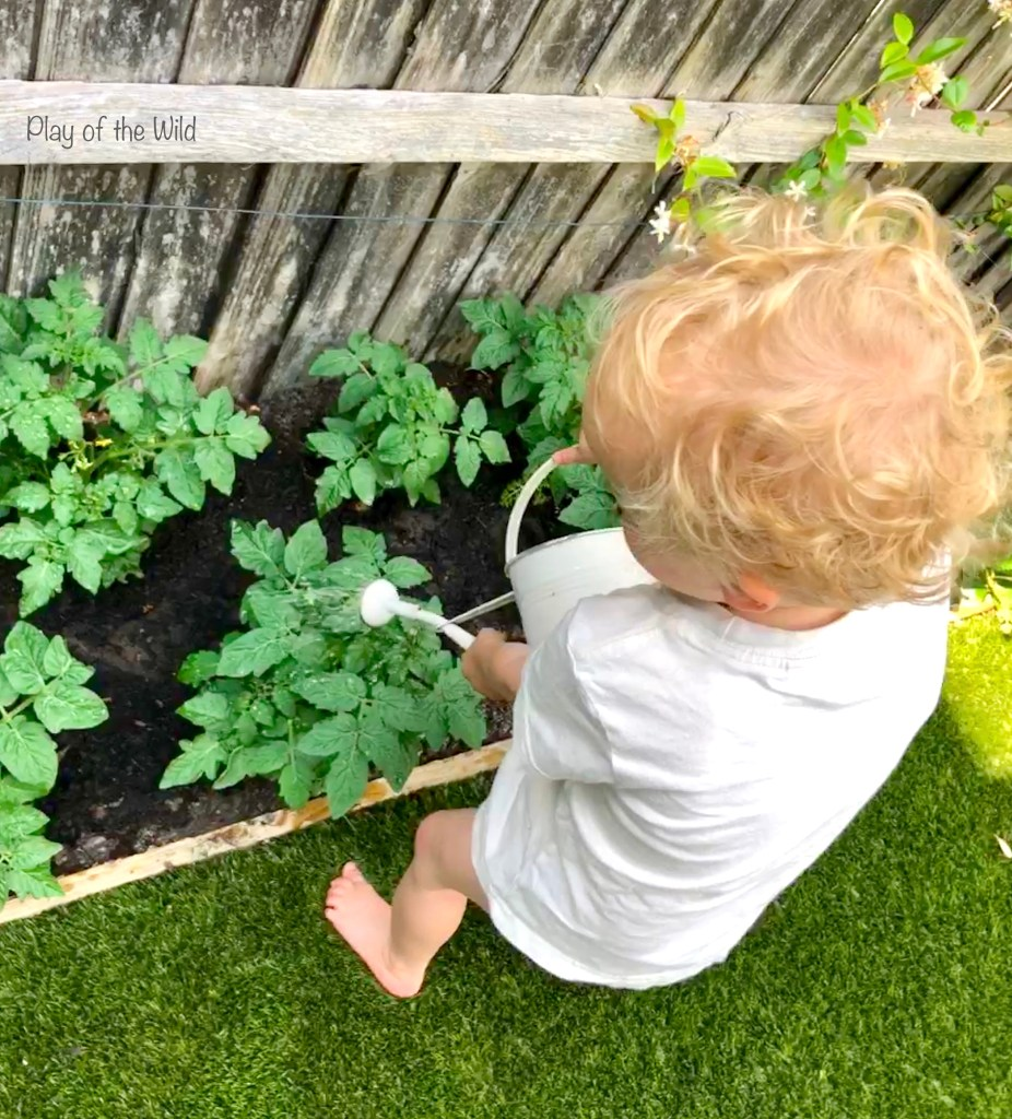 How to make a vegetable garden for kids. watering plants with children.