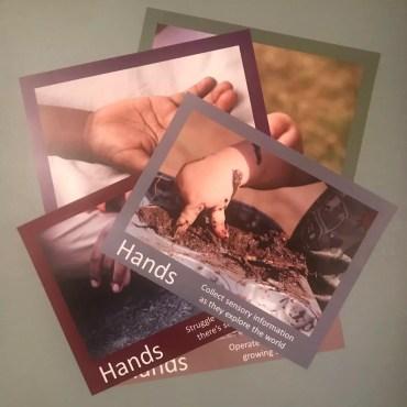 Hands Poster Set