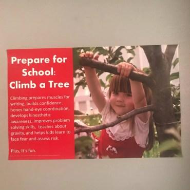 Climb A Tree Poster