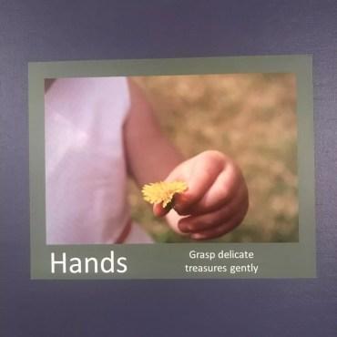 Hands Grasp Gently Poster