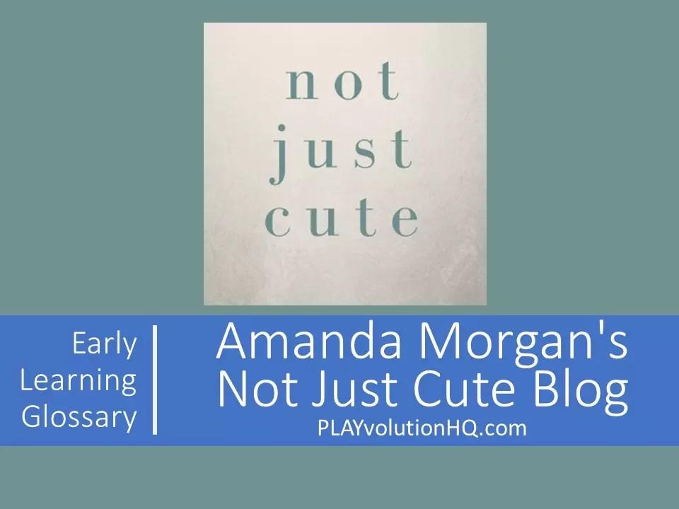 Amanda Morgan's Not Just Cute Blog