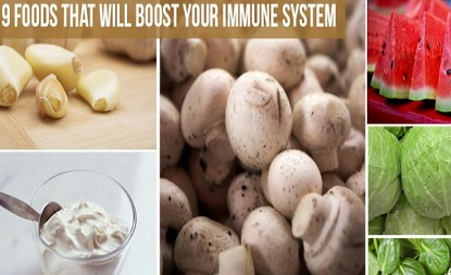 9 Foods Which Can Boost Your Immune System