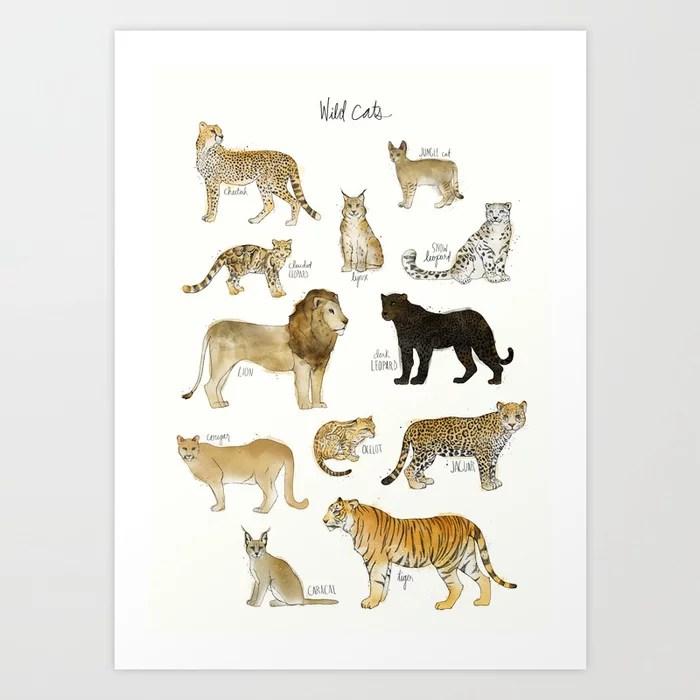 Sunday's Society6 | Wild cats art print