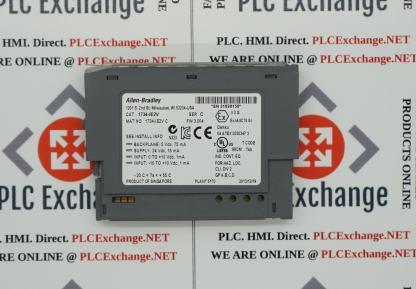 Allen-Bradley 1734-IE2V POINT I/O 24V Dc 2 Channel High Density Analog Voltage Input Module
