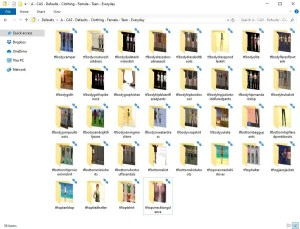 Default Clothing Folder