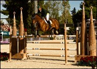 International-Jumping-Competition-2013-Barcelona-22-Picture