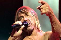 Iggy Pop by Todd McGovern