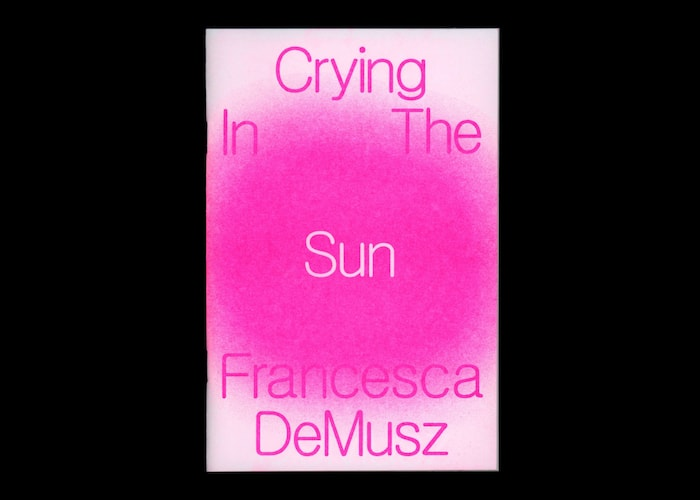 Crying In The Sun chap book by Francesca DeMusz