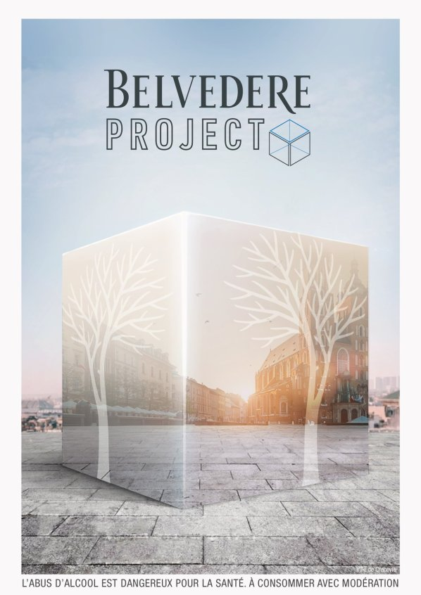Belvedere Project affiche