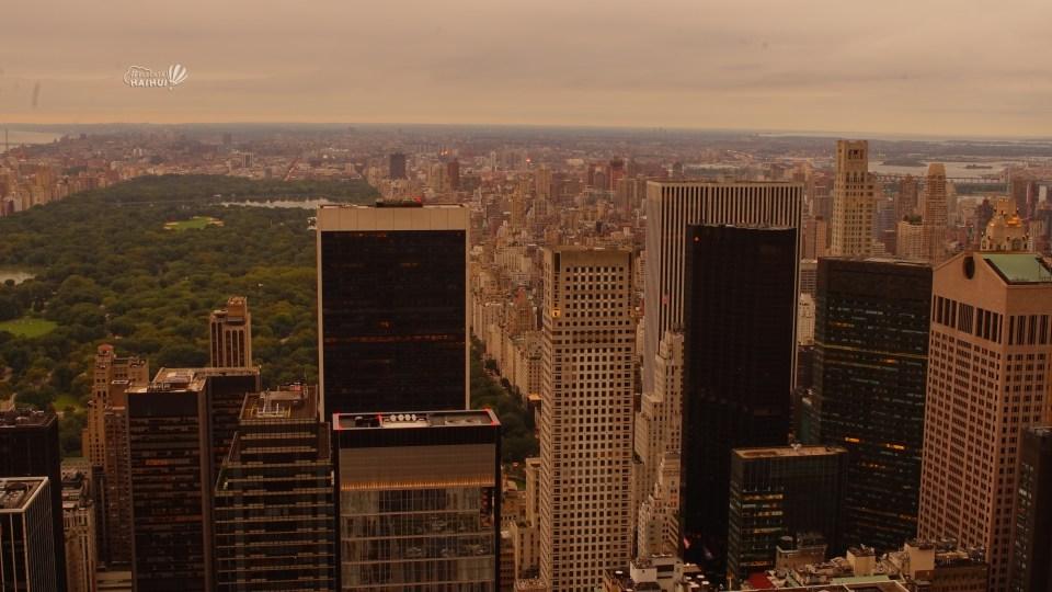 view Central Park from Rockefeller Center.jpg