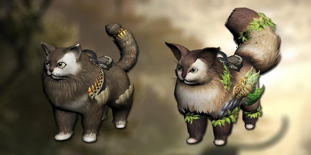 New cat mounts