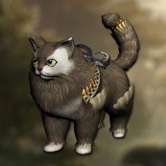 cat_mount01