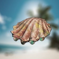 clam_metin