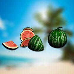 melon_stone
