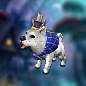 pet_dog_prince1