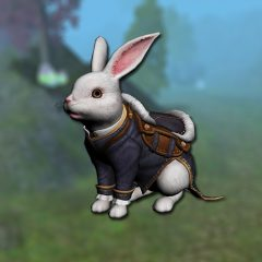 rabbit_mount2