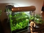 水槽用フィルターの選び方と種類別にオススメの水槽用フィルターを紹介!!