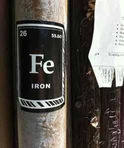 iron bioavailability