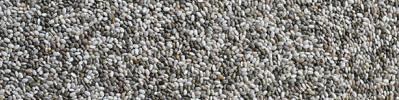 omega 3 chia seeds