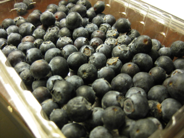 2009_07_04_blueberries