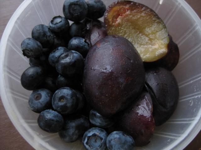 2009_07_23_fruit