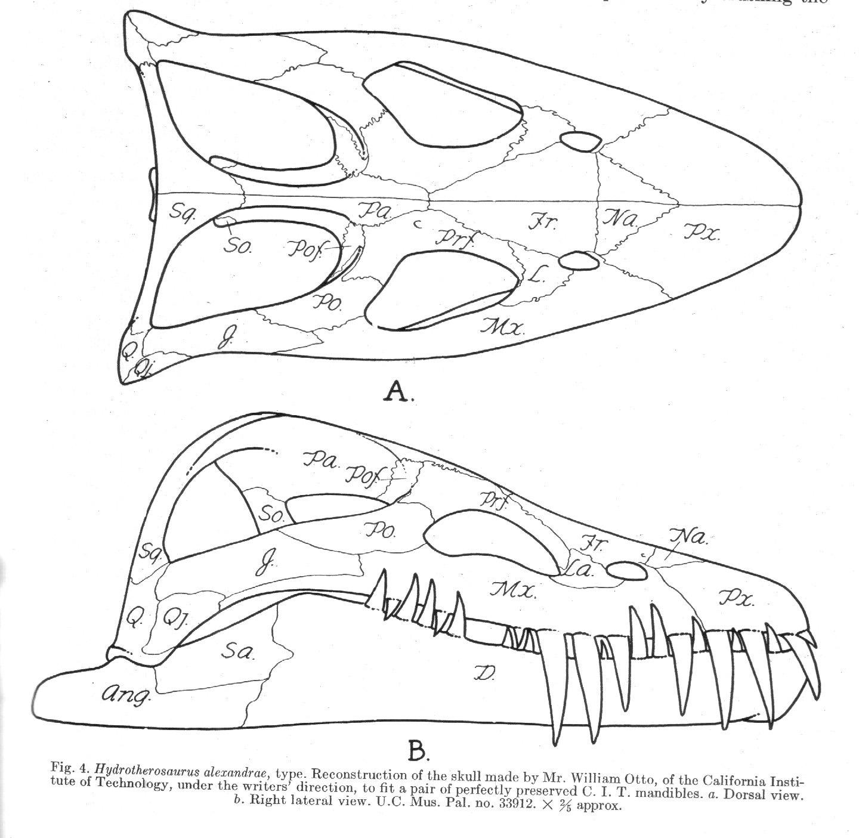 Antediluvian Salad Plesiosaur Machinations I Introducing
