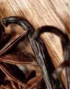 Millefiori Vanilla and Wood